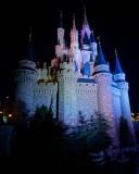 Cinderella's castle side, night