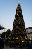 Disney Springs Christmas tree and moon