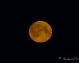 Full måne - Full moon