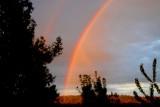 Rainbow from back yard.jpg