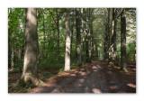 Hikes - Ballades - Wandelingen