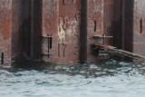 Collingwood Harbour Dry Dock Water Level Nov. 1, 2013 at 1300