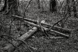 Fallen Pole, Erie line, Akron, Ohio