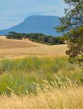 Mount Wellington and hay fields
