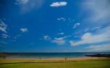 Johnsons Beach, Penguin