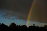 Rainbow 160817