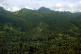 Manado's Mountains and Forests