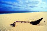 Historic Beach with Carcass
