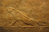 The Wounded Lioness: Masterpiece of  Mesopotamean Art!