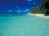 Paradise In High Tide