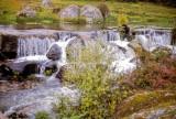 River of Many Dreams