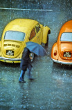 Two VW In The Rain