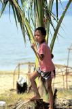 Hide & Seek Behind Palm Tree