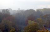 Colours Of Autumn Mists
