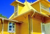 The Yellow House On Film