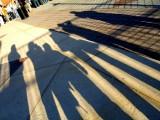 Camden Yards Shadows