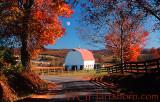 Autumn Backroad Moonlight