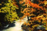 Franconia Creek