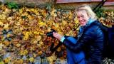 Fall in Porvoo Finland