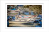 2014 - Doca - Faro, Algarve - Portugal