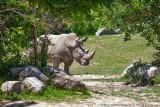 2015 - Toronto Zoo, Ontario - Canada
