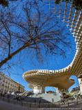 2016 - Metropol Parasol - Plaza de la Encarnacion, Seville - Spain