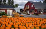 2016 - Picton (Prince Edward County, Ontario - Canada