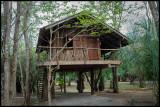 tree house room in Bonito.jpg