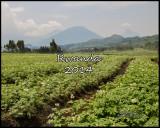 rwanda_2014