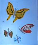 Discovery Wall Butterflies