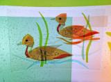 Discovery Wall Ducks