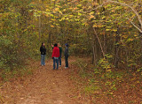 Fall Nature Walk with Jennifer Lolley