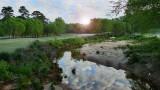 VIDEO:  Wildlife of Moore's Mill Creek (Part 1)