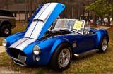 Ford Shelby Cobra April 6