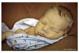 Baby Evan July 29