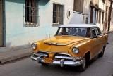 (76)   Dodge