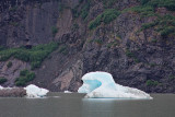 Small icebergs (growlers and bergy bits)  in Mendenhall Lake
