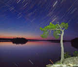 Star Trails 2.jpg