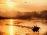 Nature's Own Icebreakeer Fleet