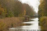 Autumn in Almere