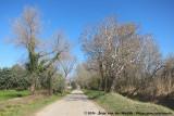 The road to La Jasse