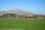 Farming underneath Les Alpilles