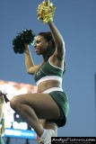 Sacramento State Hornets Cheerleader