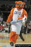 Charlotte Bobcats mascot