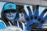 Carolina Panthers fan