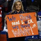 Houston Texans fan