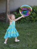 September 2013 - Happiness - Chasing Bubbles - Brian Compton