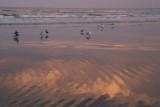 July 2015 - Water - Sunset Beach - Vicki Hedberg