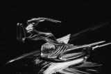 April 2016 - Low Key - Flying Gazelle - Dennis Hedberg