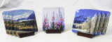 #3 Seller.  Coaster set